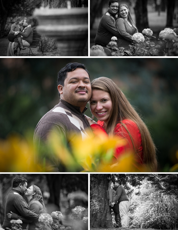 BLOG PREBODA MP & HERNAN2